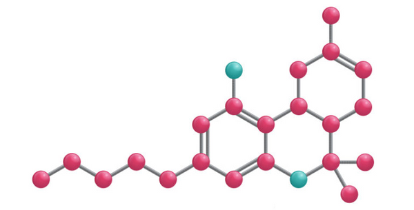 The chemical structure of the Delta 8 molecule.