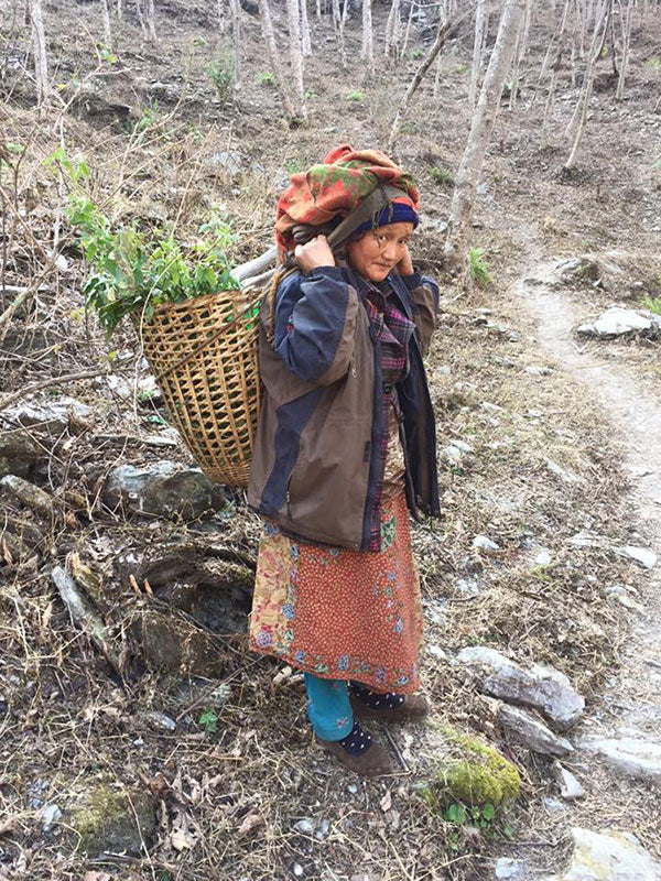 Nepalese woman on forest path