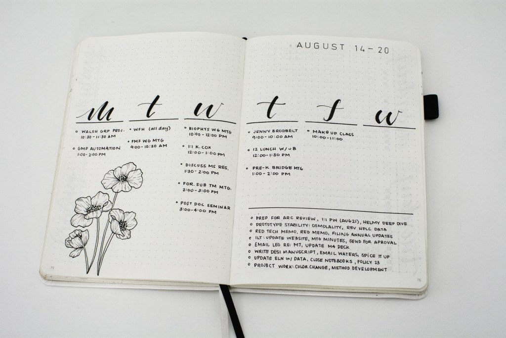 Liz Weekly Log in her Bullet Journal