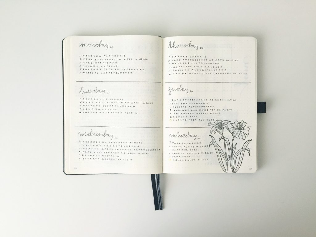 feebujo daily log