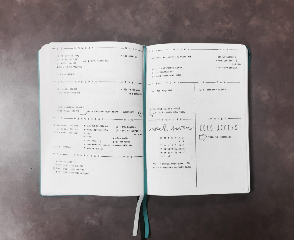 Weekly log from The Illustrated Bullet Journal of Sarah from @luckyletters
