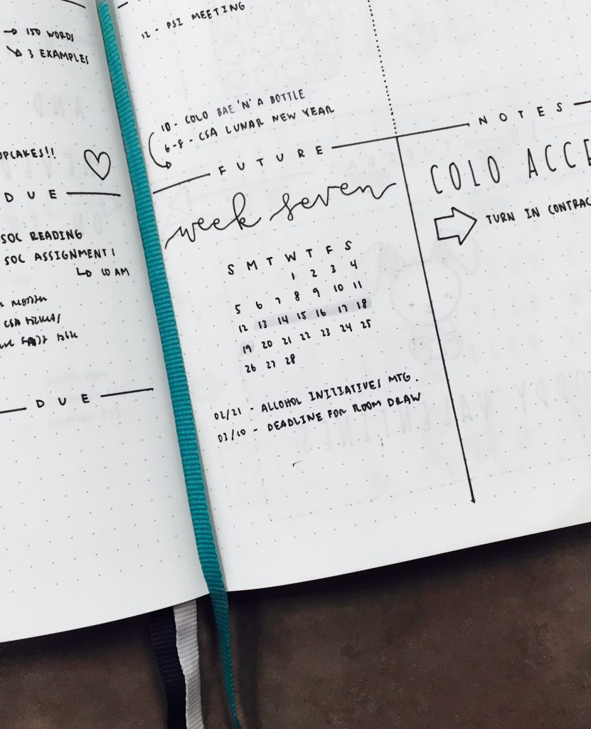 A closer look into the Weekly Log of The Illustrated Bullet Journal of Sarah from @luckyletters
