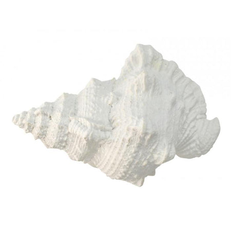 White Resin Sea Snail Shell Large