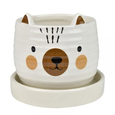 Blake Bear Pot With Saucer 9x7.5cm Multi