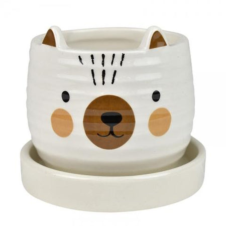 Blake Bear Pot With Saucer Multi