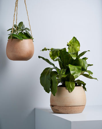 Small Hanging Planter White Garden to Table