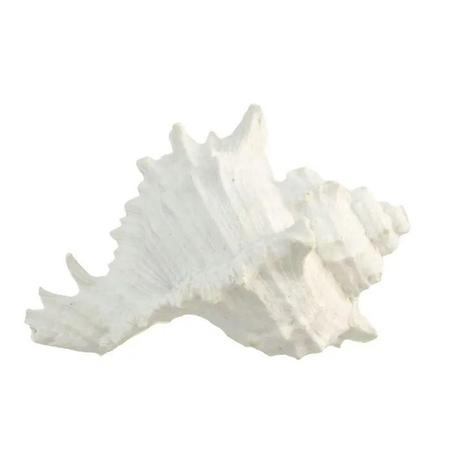 White Resin Sea Snail Shell