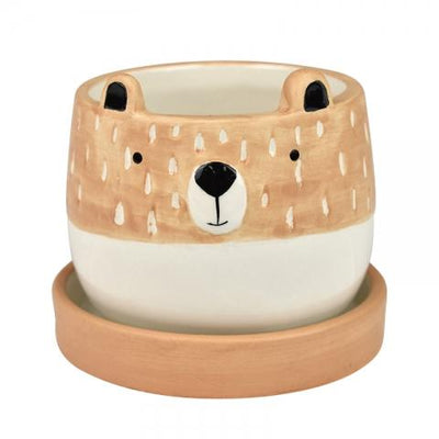 Blair Bear Pot With Saucer 9x7.5cm Blush