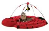 Bed Bug Play Center