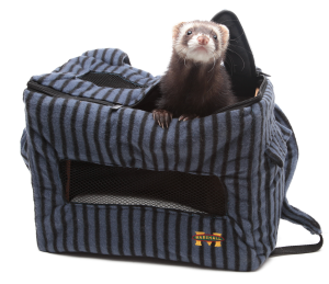 Front Pack for Small Pets