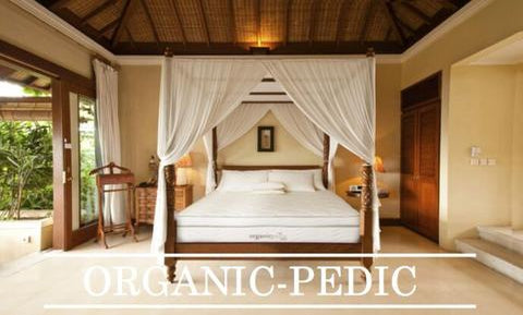OrganicPedic by OMI Organic Mattresses