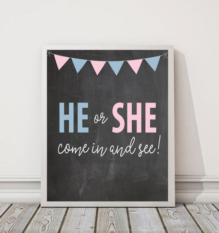 The Big Reveal Gender Reveal Party Supplies \u0026 Inspirations