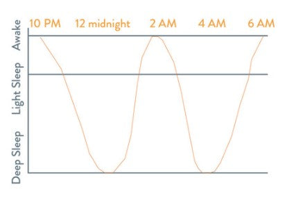 adult sleep cycle chart
