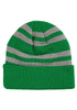 HARRY POTTER Slytherin Crest Striped Beanie