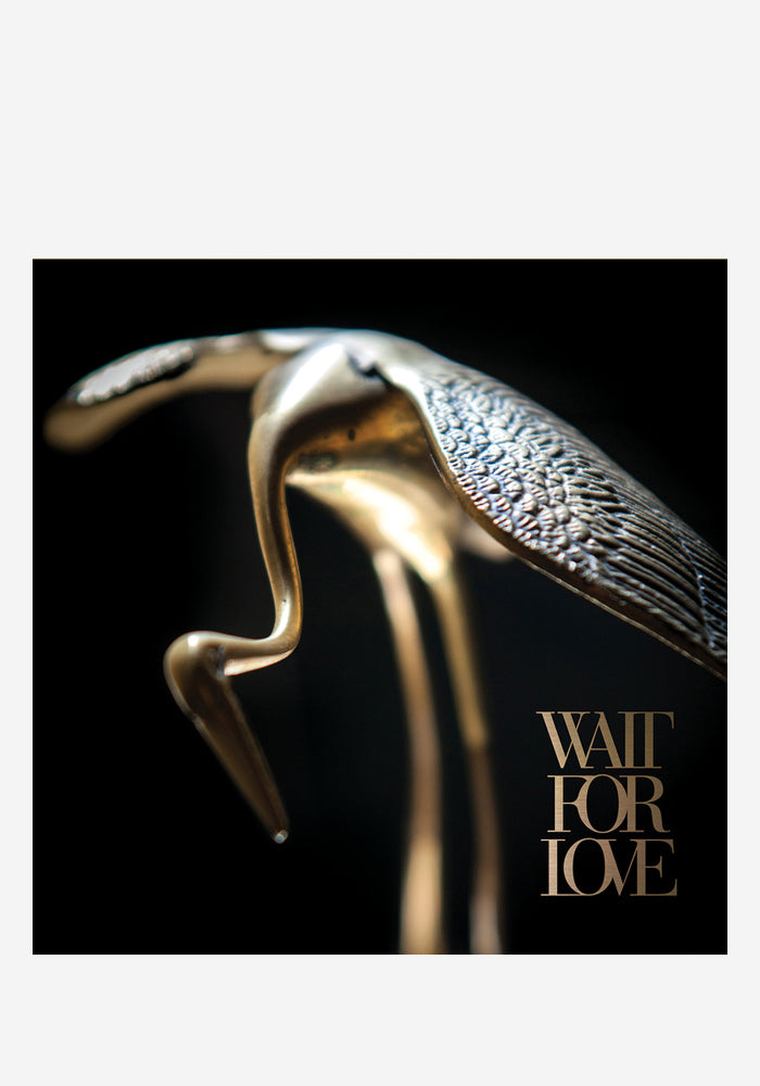 PIANOS BECOME THE TEETH Wait For Love LP (Color)