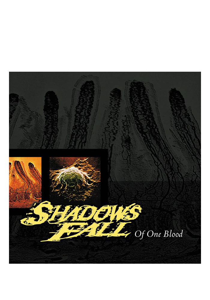SHADOWS FALL Of One Blood 20th Anniversary LP (Color)