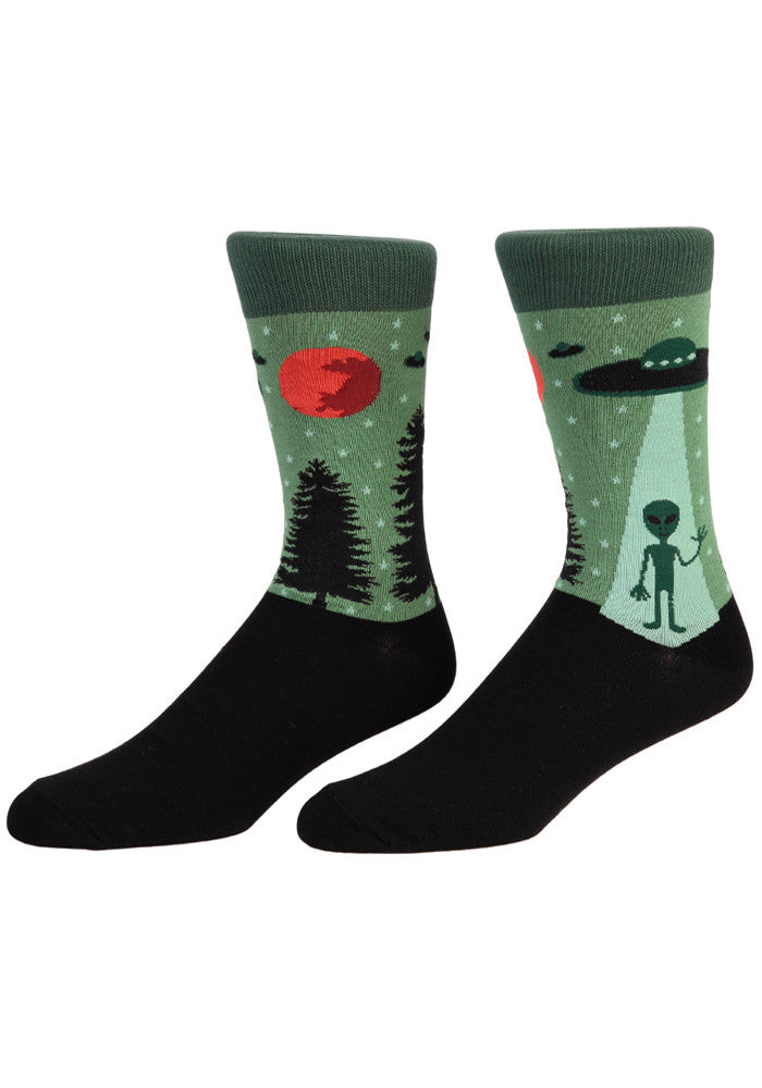 519c528a720 I Believe In Aliens Socks