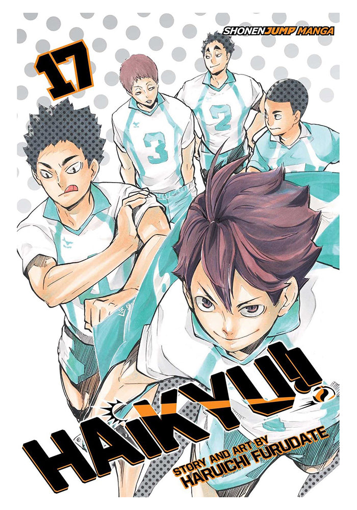 VIZ MEDIA Haikyu!! Vol. 17 Manga
