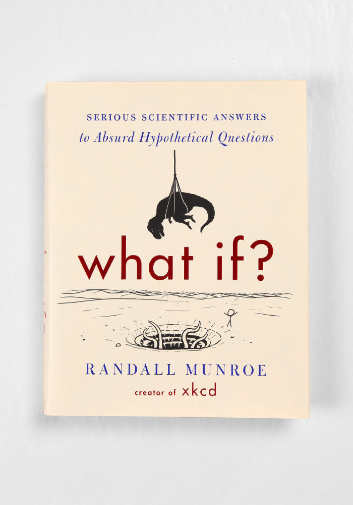 WICKED FUN READS What If?: Serious Scientific Answers to Absurd Hypothetical Questions by Randall Munroe