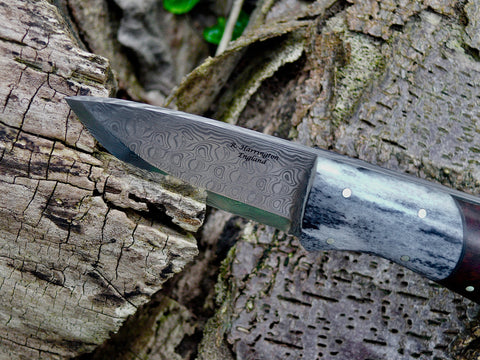 Damasteel and Arizona Desert ironwood Bushman's Pal