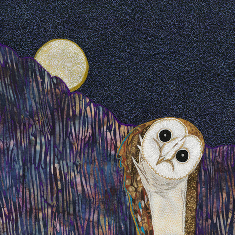 Barn Owl in the Moonlight - Limited Edition Print