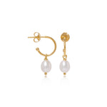 Gratia Small Gold Vermeil Hoop Earrings with Cultured Freshwater Pearl Drops