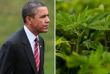 Obama Will Sign Executive Order Removing Marijuana From Schedule One