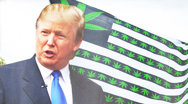 Why The Trump Administration's Threat To Launch A War On Legalized Weed Might Be A Big Nothingburger