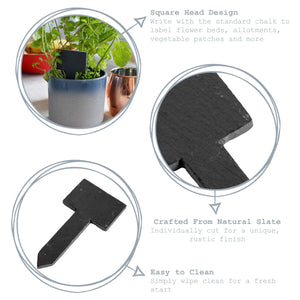Nicola Spring Square Head Slate Plant/Herb Tags with Chalk Sticks x 6