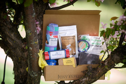 May Subscription Box equigroomer