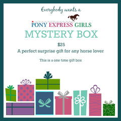 Mystery Box - A One Time Box - Pony Express Girls