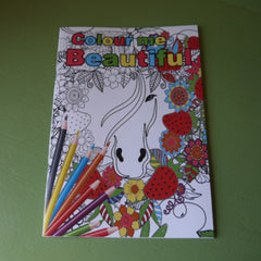Colouring Book - Horse themed - adult detailed - Pony Express Girls