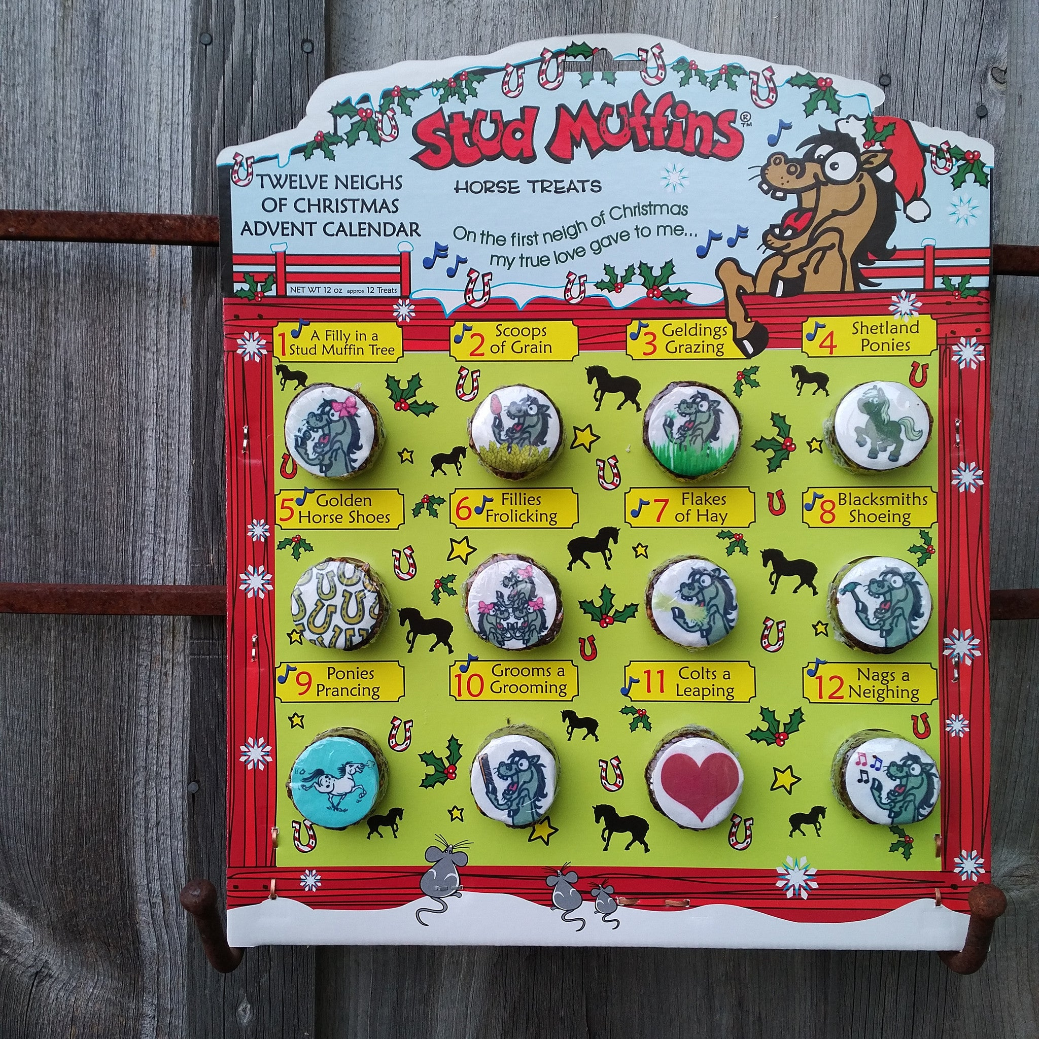 Stud Muffins Advent Calendar - Pony Express Girls Canada - 1