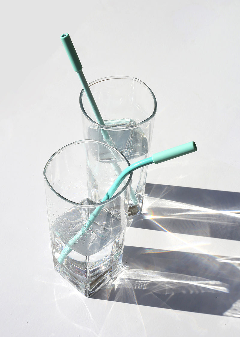 Official Key Items ReUse Metal Straw: Mint Long Straight