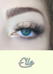 AOA Studio Eyelashes - Elle