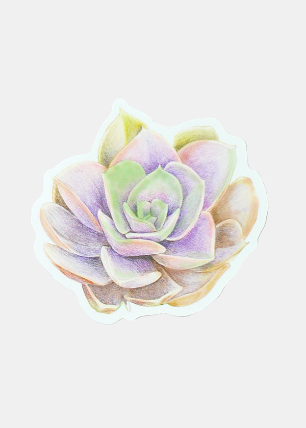 Oki Sticker- Succulent