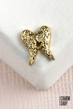 Double Wing In Light Gold Locket Charm