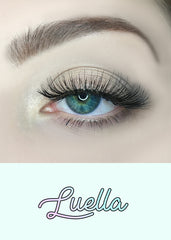 AOA Studio Eyelashes - Luella 6-Pack