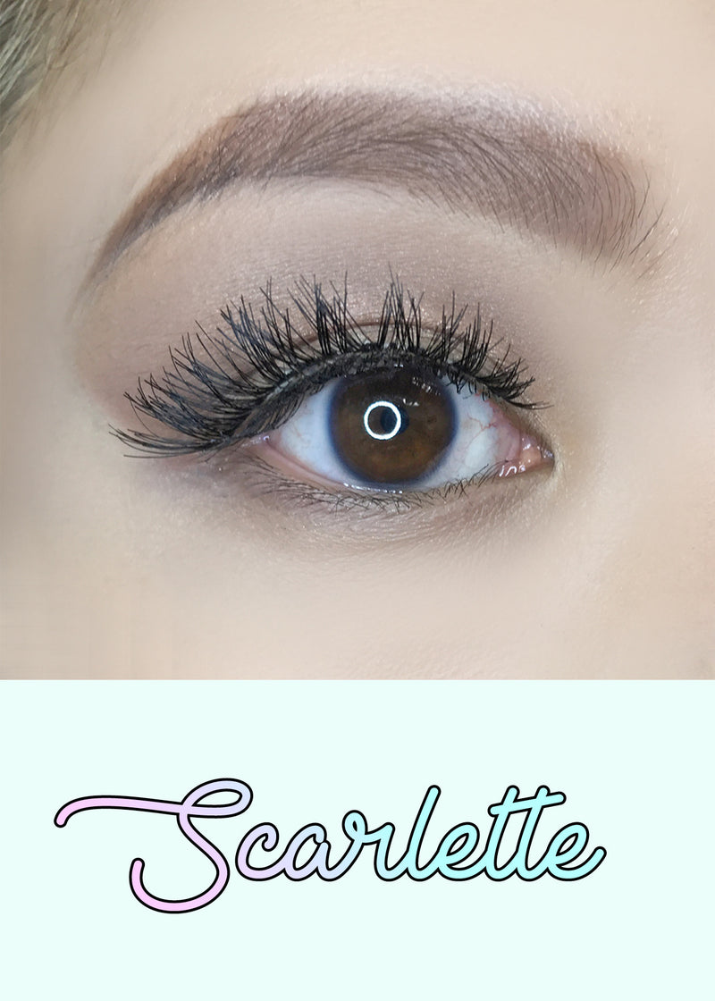 AOA Studio Eyelashes - Scarlette 6-Pack