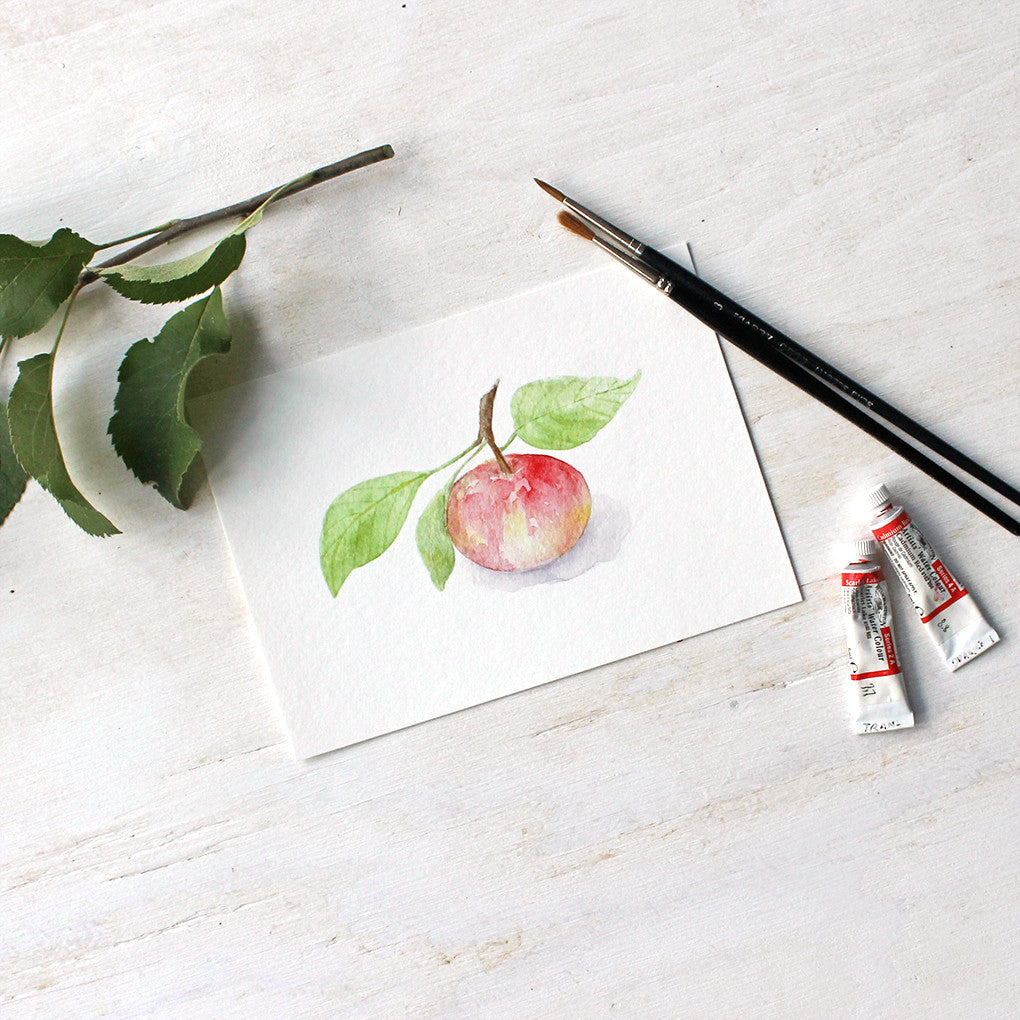 Print of watercolor painting of apple by Kathleen Maunder - Trowel and Paintbrush