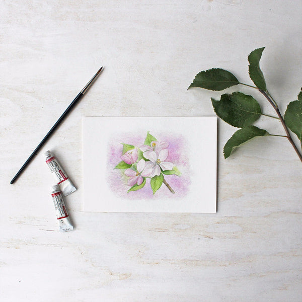 Apple blossom print based on an original watercolor by Kathleen Maunder - Trowel and Paintbrush