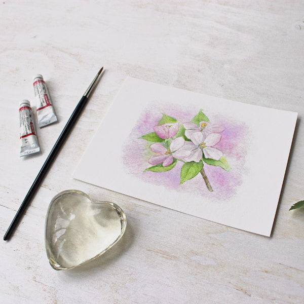 5 x 7 apple blossom print based on a watercolor by Kathleen Maunder - Trowel and Paintbrush