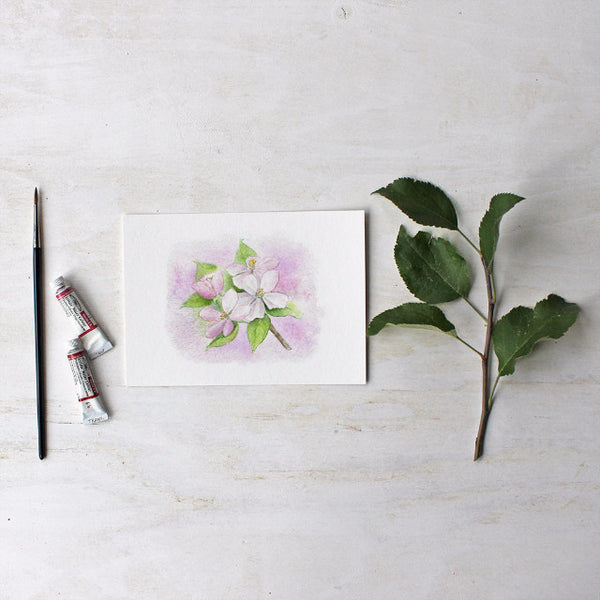 Apple blossom print based on a watercolor by artist Kathleen Maunder - Trowel and Paintbrush