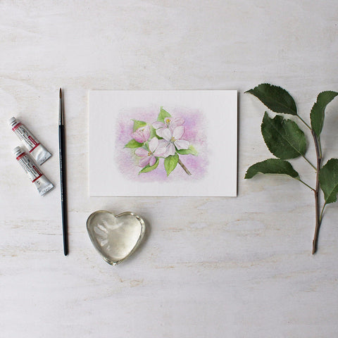 Apple Blossoms Watercolor Print