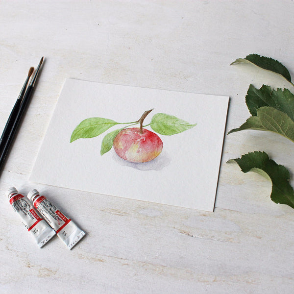 Giclée print of apple watercolor painting by Kathleen Maunder - trowelandpaintbrush