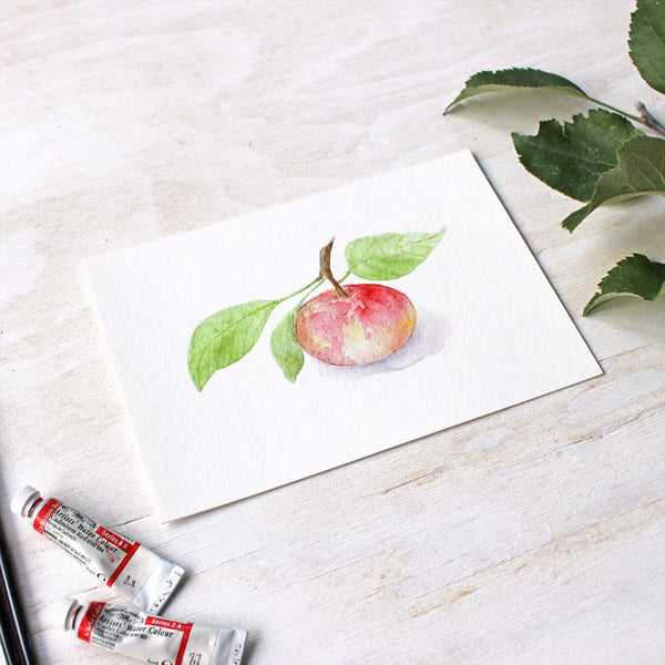 Watercolour print of apple by Kathleen Maunder / Trowel and Paintbrush