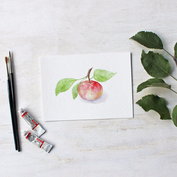 Watercolor painting of little apple - 5 x 7 print - Kathleen Maunder (Trowel and Paintbrush)