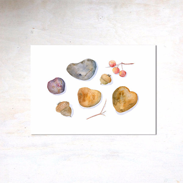 Watercolor print of heart shaped rocks, acorns and berries. Watercolor artist Kathleen Maunder - Trowel and Paintbrush