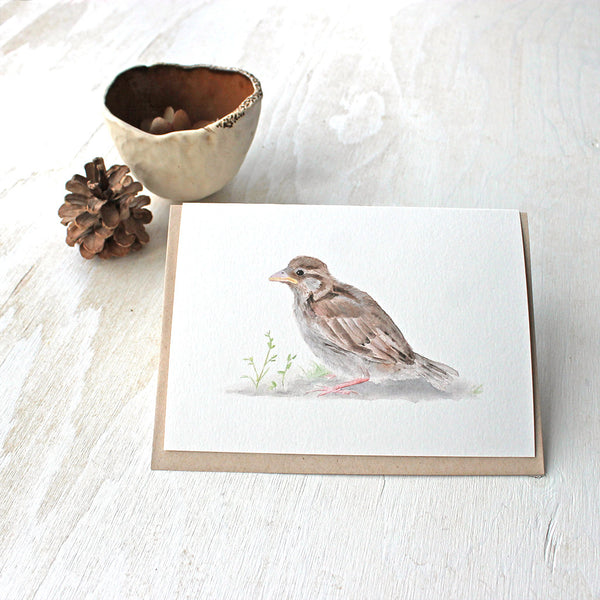 Baby sparrow watercolor cards by Kathleen Maunder, trowelandpaintbrush