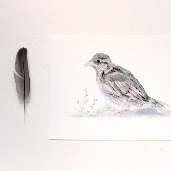 Sparrow art print by watercolour artist Kathleen Maunder, trowelandpaintbrush